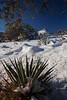 NM-2013-040: Bootheel, Coronado National Forest, NM, USA