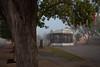 NM-2012-263: Mesilla, Dona Ana County, NM, USA