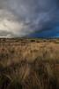 NM-2013-363: Silver City, Grant County, NM, USA