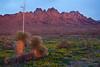 NM-2010-123: Organ Mountains, Dona Ana County, NM, USA
