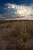 NM-2011-166: Santa Teresa, Dona Ana County, NM, USA