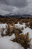NM-2013-177: , Taos County, NM, USA