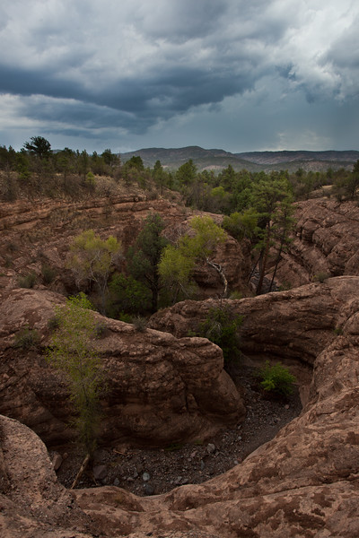 NM-2011-159: Gila National Forest, Grant County, NM, USA