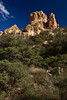 NM-2011-298: Coronado National Forest, Hidalgo County, NM, USA