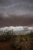 NM-2012-253: La Mesa, Dona Ana County, NM, USA