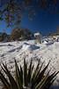 NM-2013-041: Bootheel, Coronado National Forest, NM, USA