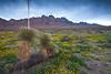 NM-2010-117: Organ Mountains, Dona Ana County, NM, USA