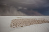 NM-2013-293: White Sands National Monument, Otero County, NM, USA