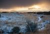 NM-2013-531: , Dona Ana County, NM, USA