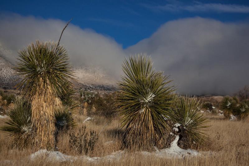 NM-2013-543: , Dona Ana County, NM, USA