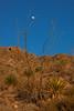 NM-2013-277: Dog Canyon, Otero County, NM, USA