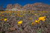 NM-2012-028: Steins, Hidalgo County, NM, USA