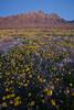 NM-2010-112: Organ Mountains, Dona Ana County, NM, USA