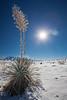 NM-2013-047: Horse Camp Road, Hidalgo County, NM, USA