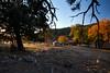 NM-2011-303: Cox Canyon, Otero County, NM, USA
