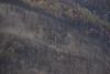 NM-2013-333: Black Range, Sierra County, NM, USA