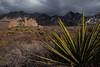 NM-2012-321: Dripping Springs, Dona Ana County, NM, USA