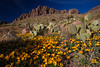 NM-2012-074: Rockhound State Park, Luna County, NM, USA
