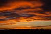 NM-2013-268: East Potrillo Mountains, Dona Ana County, NM, USA