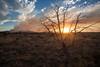 NM-2012-163: Alto, Lincoln County, NM, USA