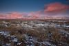 NM-2011-423: Las Cruces, Dona Ana County, NM, USA