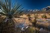 NM-2013-542: , Dona Ana County, NM, USA