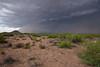 NM-2010-194: Camel Mountain, Luna County, NM, USA