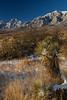 NM-2013-539: , Dona Ana County, NM, USA