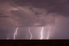 NM-2013-392: , Dona Ana County, NM, USA