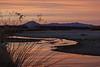 NM-2012-309: Mesilla, Dona Ana County, NM, USA