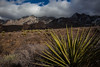NM-2012-318: Dripping Springs, Dona Ana County, NM, USA