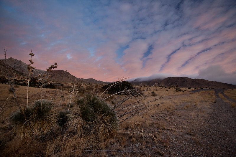NM-2011-369: Aguirre Springs, Dona Ana County, NM, USA