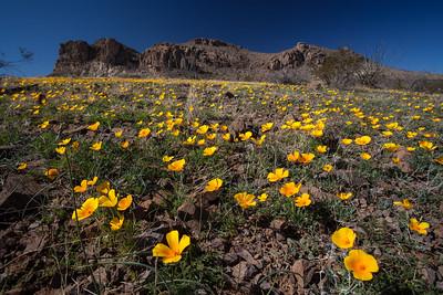 NM-2012-020: Steins, Hidalgo County, NM, USA