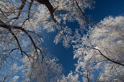 NM-2010-003: Farmington, San Juan County, NM, USA