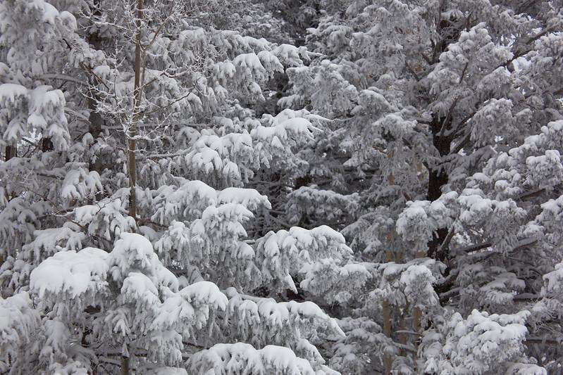 NM-2011-044: Benson Ridge, Otero County, NM, USA