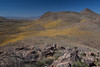 NM-2012-043: Steins, Hidalgo County, NM, USA