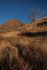 NM-2013-512: , Dona Ana County, NM, USA