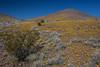 NM-2012-031: Steins, Hidalgo County, NM, USA