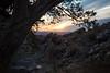 NM-2013-131: Achenbach Canyon, Dona Ana County, NM, USA