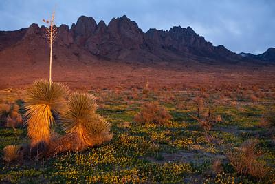 NM-2010-119: Organ Mountains, Dona Ana County, NM, USA