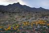 NM-2012-026: Steins, Hidalgo County, NM, USA