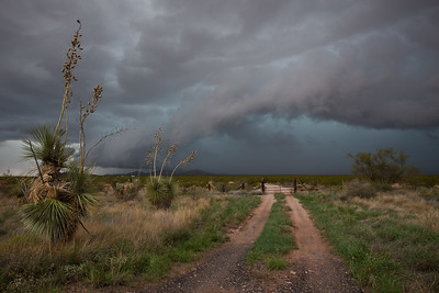 NM-2010-244: Columbus, Luna County, NM, USA
