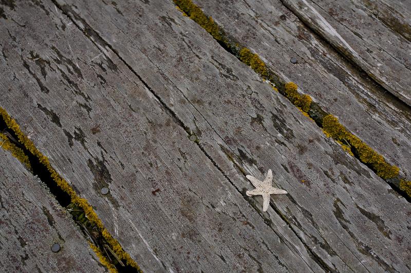 NS-2007-122: Stonehurst, Lunenburg County, NS, Canada