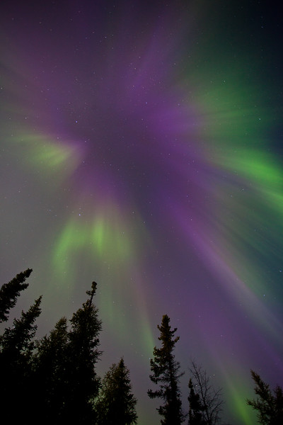 NT-2010-061: Yellowknife, North Slave Region, NT, Canada
