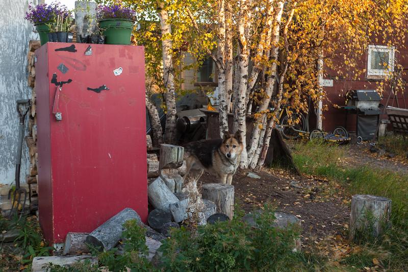 NT-2013-062: Yellowknife, North Slave Region, NT, Canada