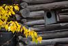 NT-2013-091: Yellowknife, North Slave Region, NT, Canada