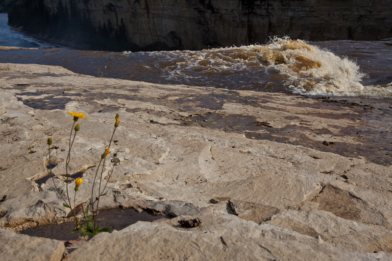 NT-2010-005: Alexandra Falls Territorial Park, South Slave Region, NT, Canada