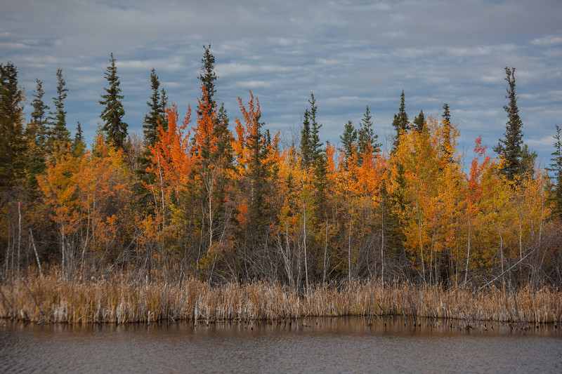 NT-2013-125: Behchoko, North Slave Region, NT, Canada