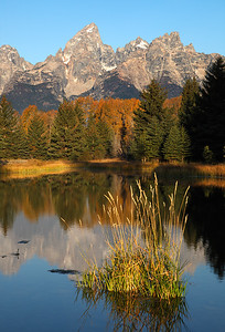 Schwabacher's Landing - Grand Teton National Park