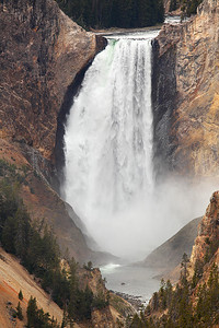 Lower Falls - Yellowstone National Park